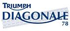 logo-diagonale-78