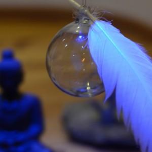 web bouda plume bleu